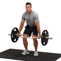 Olympic Shrug Bar